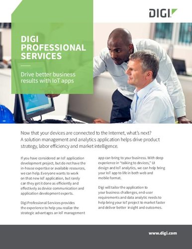 Digi Professional Services Flyer